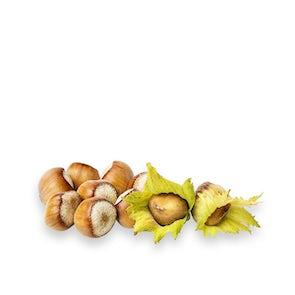 Fresh Hazelnuts from France