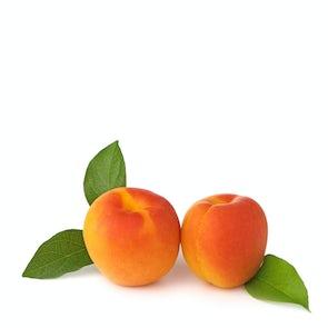 Apricot Chambertine