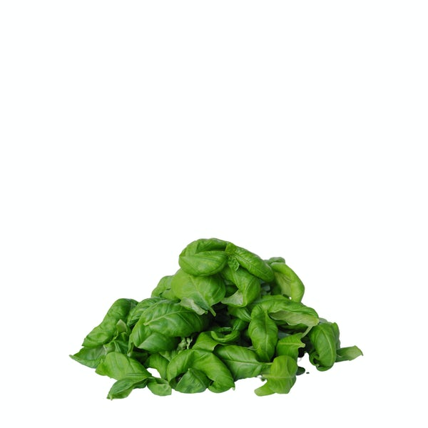 Picture 1 - Future Fresh Genovese Basil