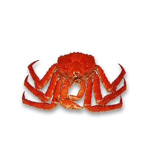 Live King Crabs