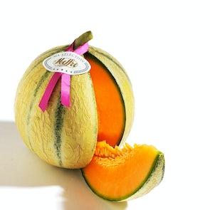 Melon Le Ruban Meffre from Cavaillon, France