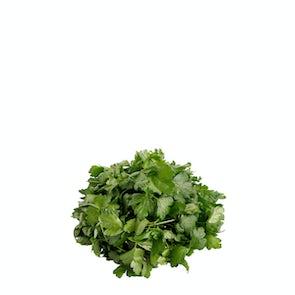 Future Fresh Italian Flat-Leaf Parsley