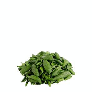 Future Fresh Savoy Spinach
